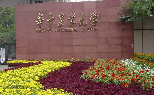 99zhen人xiao防水炮合作客户